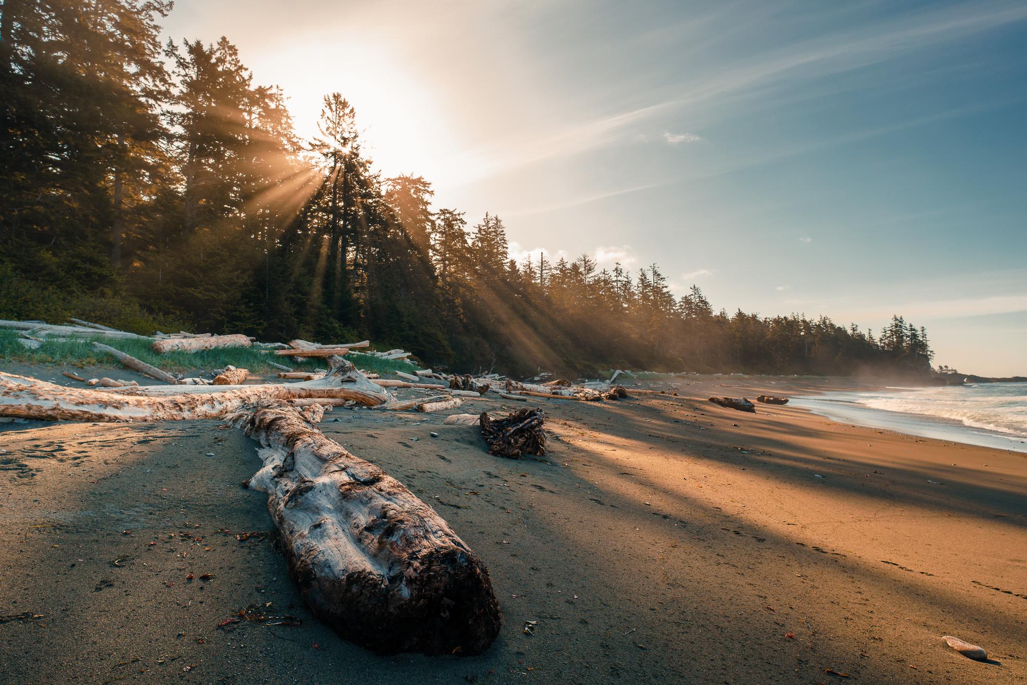 Pacific Rim National Park: West Coast Trail